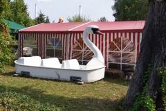 Ein Schwanboot