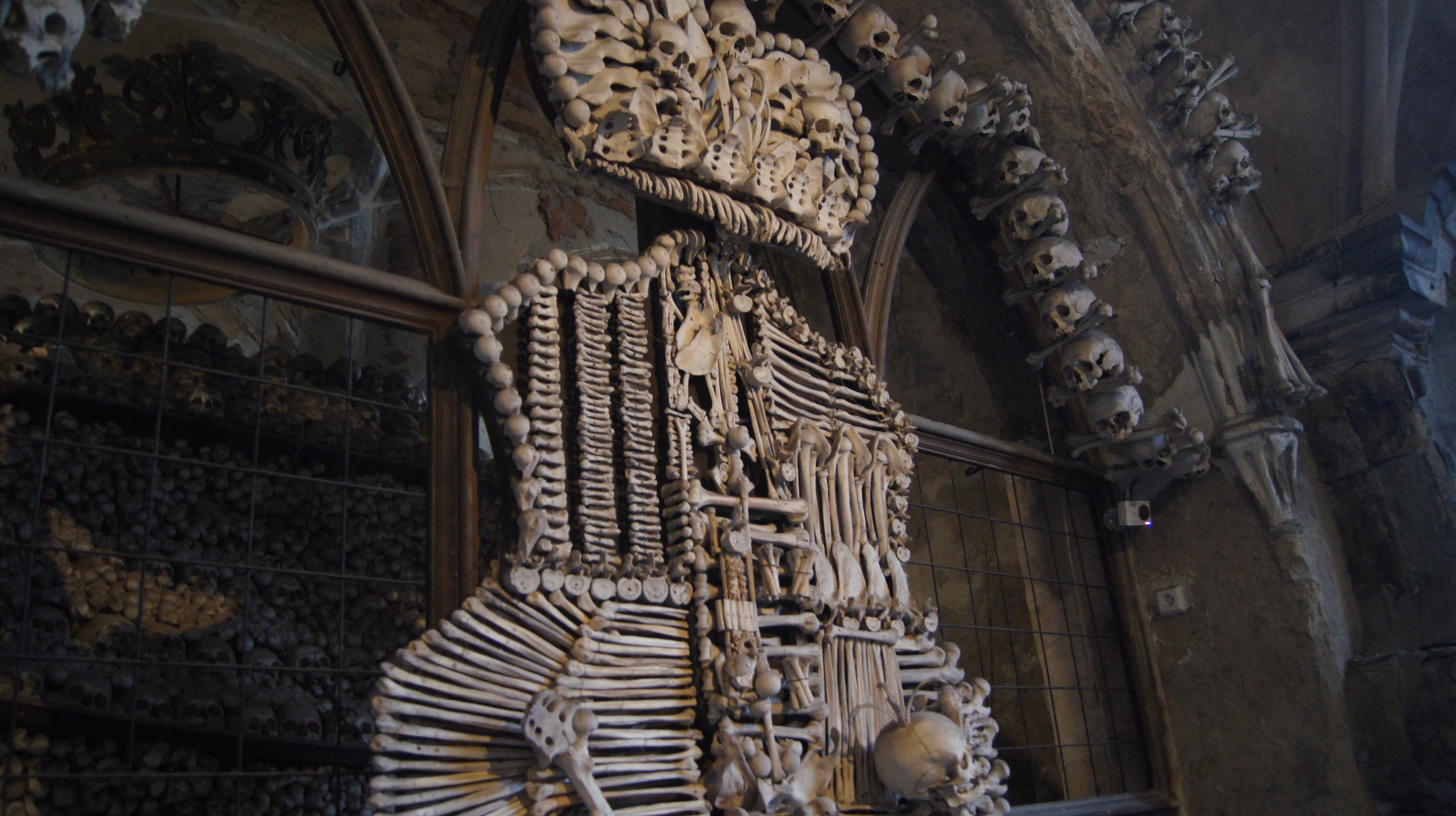 Ein Wappen komplett aus menschlichen Knochen